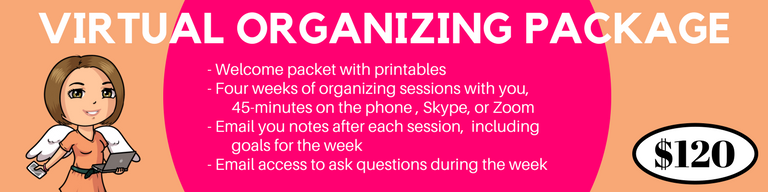 VIRTUAL ORGANIZING PACKAGE