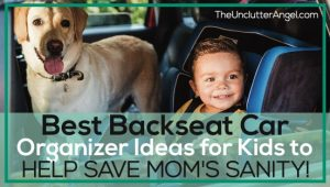 backseat organizer for kids