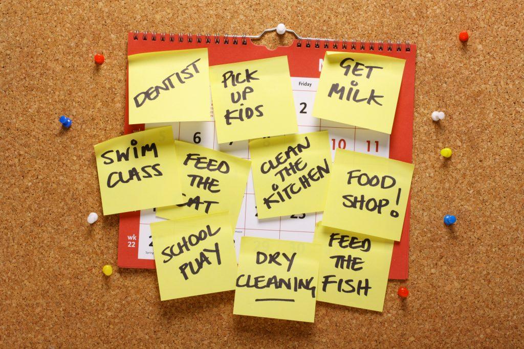 organized lists